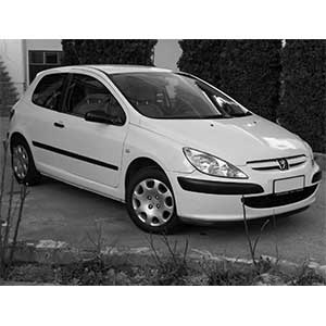 307 (2002 to 2003)
